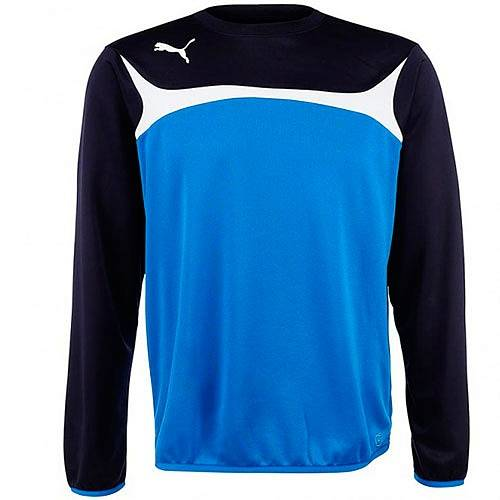 Толстовка Puma Esito 3 Training Sweat