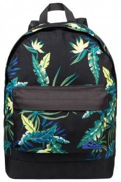 Рюкзак Quiksilver Everyday Poster Backpack