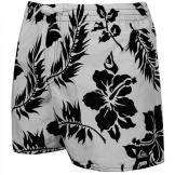 Шорты спортивные Quiksilver Shrimp Truck Volley E15 Shorts